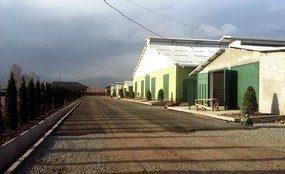 Projekt in Tadjikistan