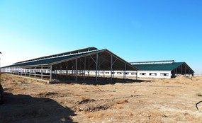Projekt im Bau in Karshi, Uzbekistan